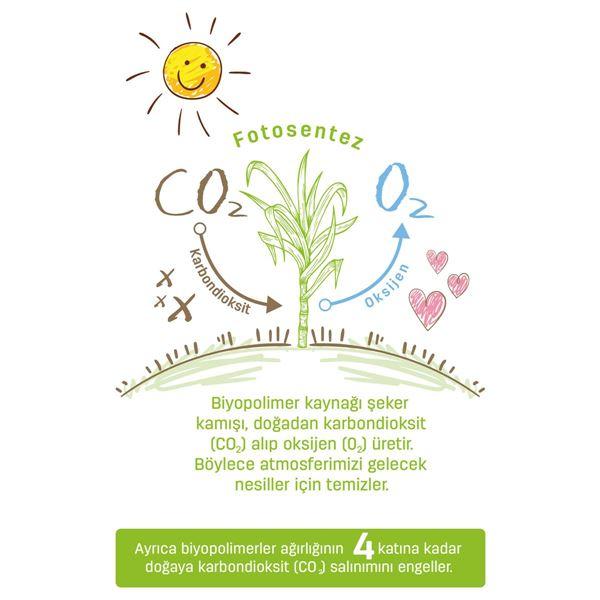 Bio Natural Külot Bez 5 Numara Junior 20 Adet + Bio Natural Islak Havlu Hediyeli